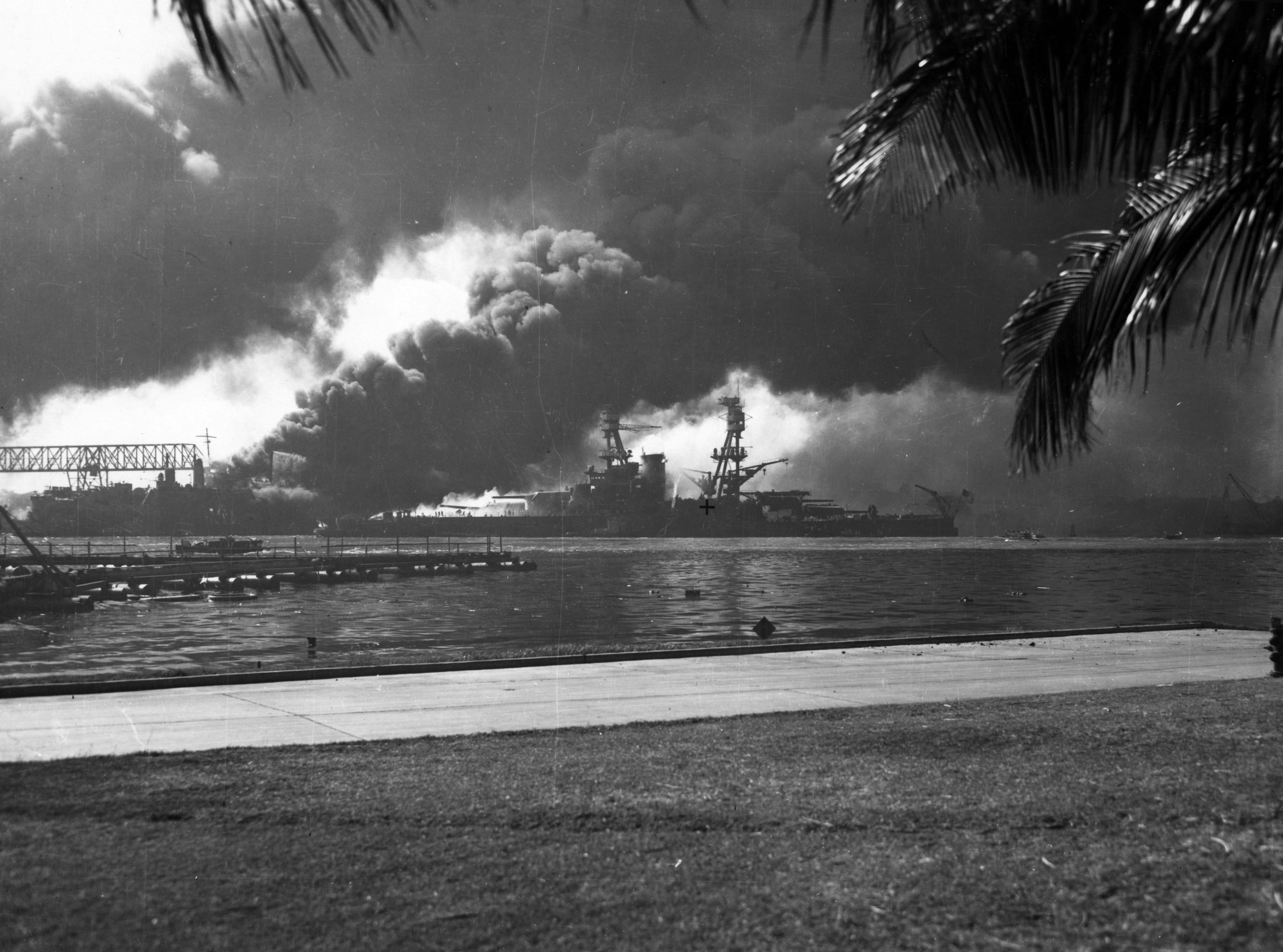 Photo of Smoke rises in the harbour