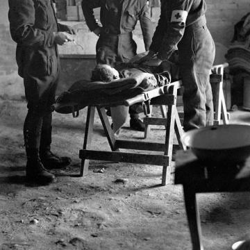 Wounded in Italy