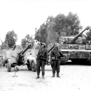 German Tiger and Anti-Tank Guns